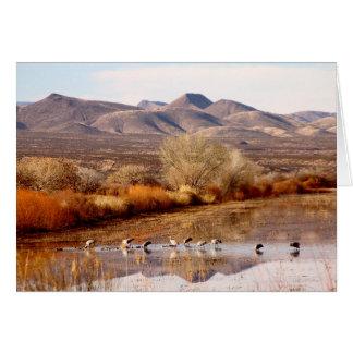 Bosque del Apache, New Mexico Card