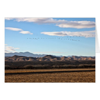 Bosque del Apache, New Mexico Card