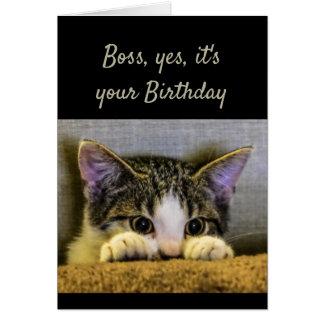 Boss can't Hide It's your Birthday Cute Kitten Card