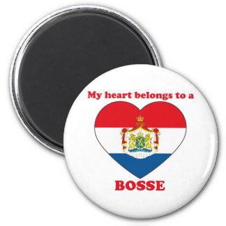 Bosse Magnets
