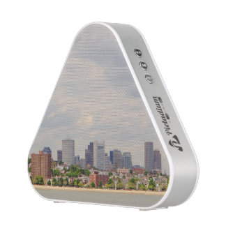 Boston at a Distance