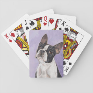 Boston bull terrier playing cards