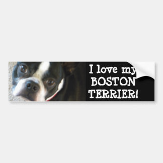 BOSTON bumper sticker