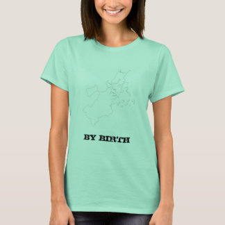 Boston Irish T-Shirt, funny T-Shirt
