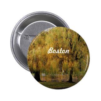 Boston Public Garden Pins