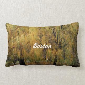 Boston Public Garden Pillows