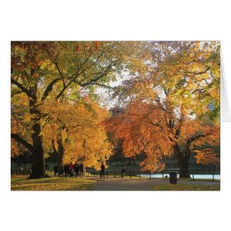 Boston Public Garden in Autumn Greeting Card