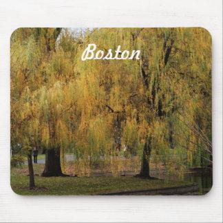 Boston Public Garden Mouse Pads