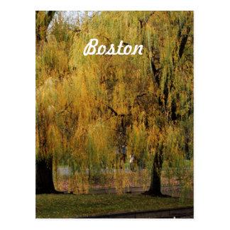 Boston Public Garden Post Cards