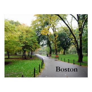 Boston Public Gardens Post Cards