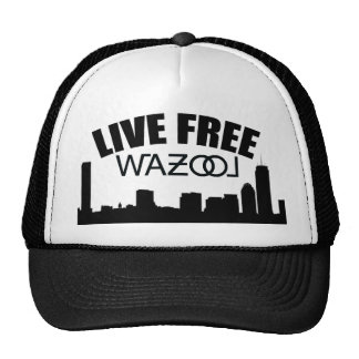 Boston Skyline Hat