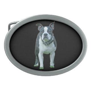 Boston terrier  1b belt buckle