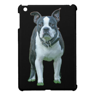 Boston terrier  1b cover for the iPad mini
