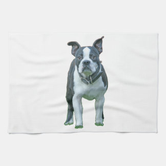 Boston terrier  1b tea towel