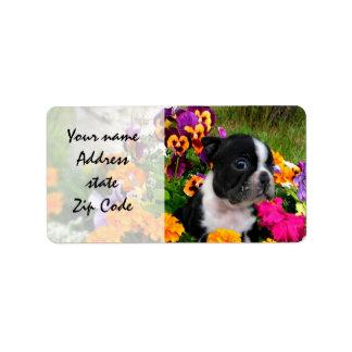 Boston Terrier Address Label