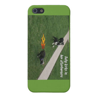 Boston Terrier:  Afterburners engaged! Cover For iPhone 5/5S