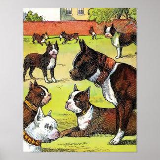 Boston Terrier and Puppies Vintage Illustration Print
