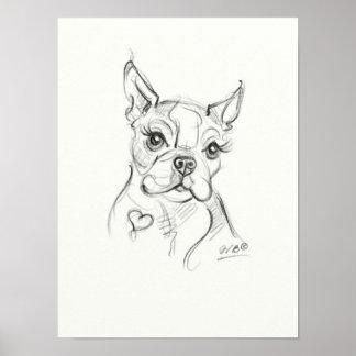 Boston Terrier Art print   Sketch Art