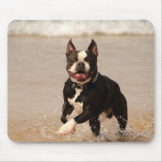 Boston Terrier at the Beach Mousepad