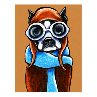 Boston Terrier Aviator Postcard