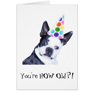Boston Terrier Birthday Party - Card