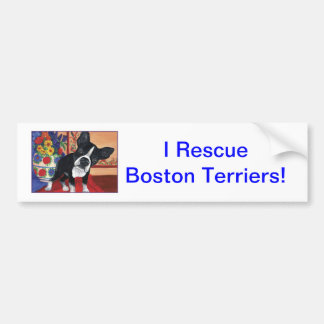 Boston Terrier Car Bumper Sticker