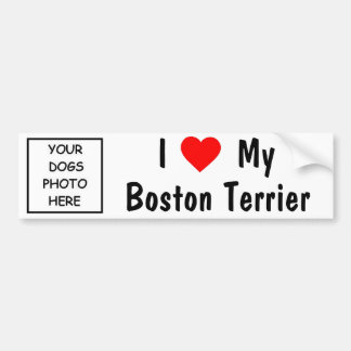 Boston Terrier Bumper Sticker
