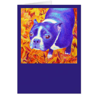 "Boston Terrier Card - ""Daisy"""