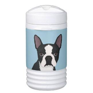 boston terrier cartoon drinks cooler