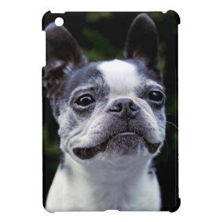 Boston Terrier Case For The iPad Mini
