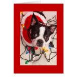 Boston Terrier Christmas Lights Santa Greeting Car Greeting Card
