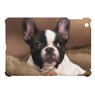 Boston Terrier Cover For The iPad Mini