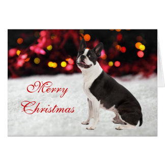 Boston Terrier cute photo custom Christmas Card