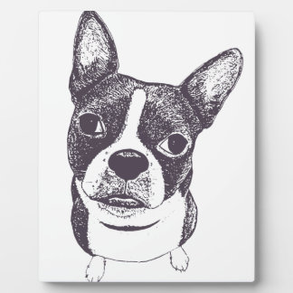 Boston Terrier Dog ARt by Carol Iyer Photo Plaques