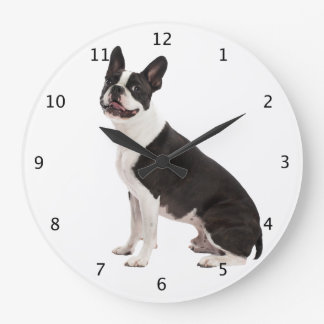 Boston Terrier dog beautiful photo wall clock gift