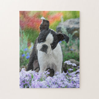 Boston Terrier Dog Cute Puppy Game 11x14 Jigsaw Puzzle
