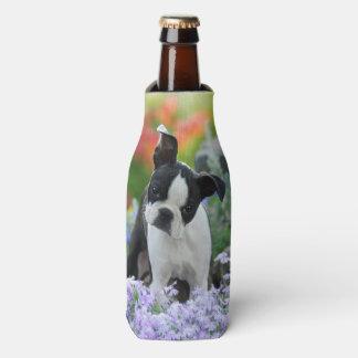 Boston Terrier Dog Cute Puppy Photo, Bottle-Jacket