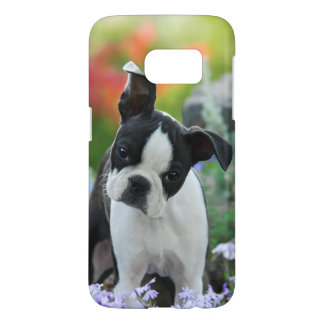 Boston Terrier Dog Cute Puppy Photo, Phonecase