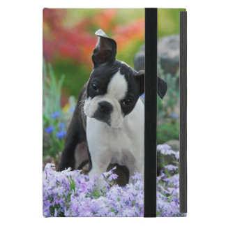 Boston Terrier Dog Cute Puppy, protection hard Cases For iPad Mini