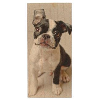 Boston Terrier dog puppy. Wood USB 2.0 Flash Drive
