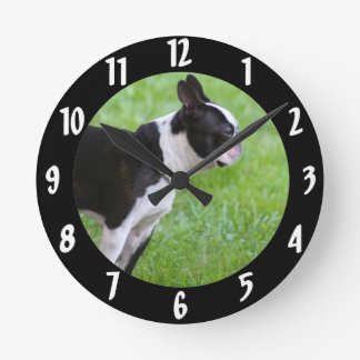 Boston Terrier dog Round Clock