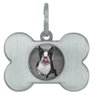 Boston Terrier Dog Tag Pet Tag