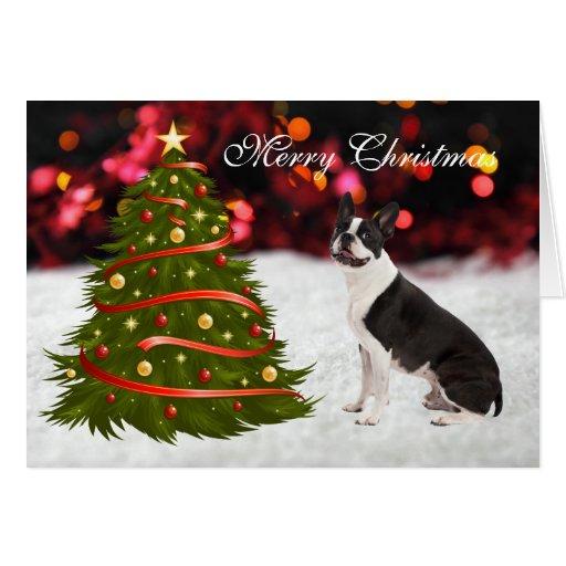 Boston Terrier dog with tree custom Christmas Card