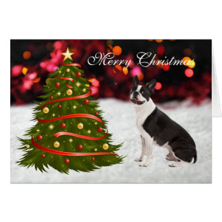 Boston Terrier dog with tree custom Christmas Card