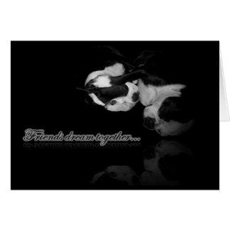 Boston Terrier Dreams Card