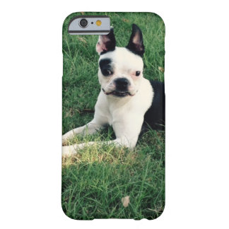 boston terrier iphone cover