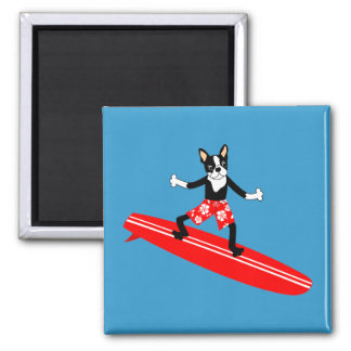 Boston Terrier Longboard Surfer Square Magnet