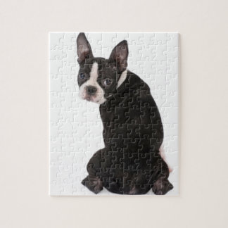 Boston Terrier Looking at You Puzzle with Gift Box