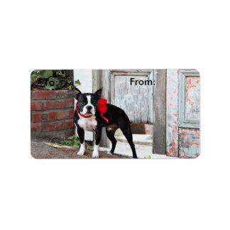 Boston Terrier - Miles Address Label