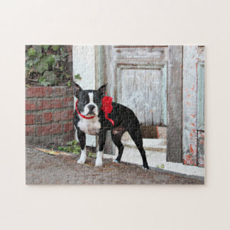 Boston Terrier - Miles Jigsaw Puzzle